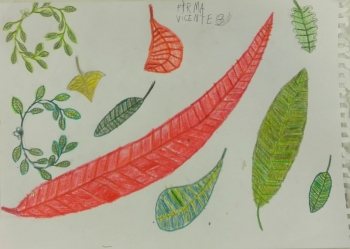 Formas y colores de Vicente
